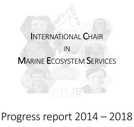 IC-MES Progress report 2014-2018.png